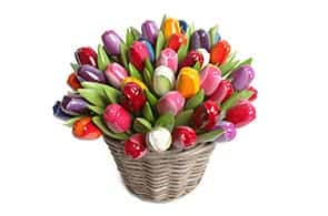 Souvenir Amsterdam Tulip